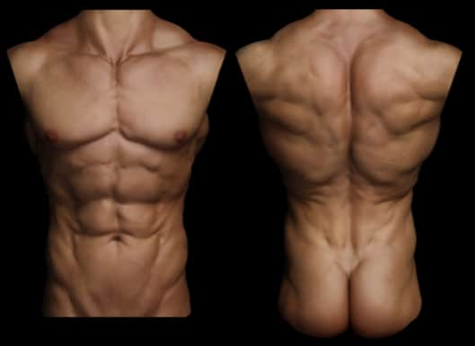 six pack abs image